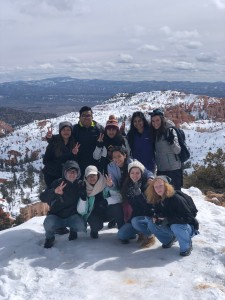 My Alternative Spring Break to Utah serving with Best Friends Animal Sanctuary to combat animal abuse.